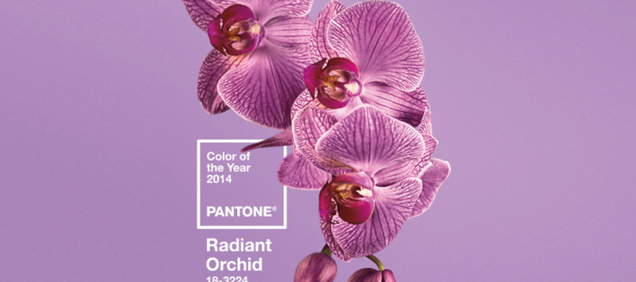 Pantone Color of the Year 2014 00